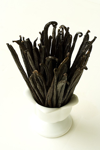 vanilla beans how to make vanilla perfume {diy}
