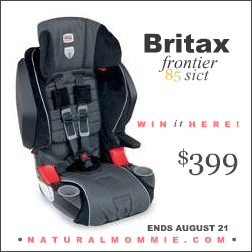 How To Remove Britax Frontier Car Seat Cover