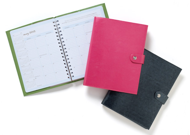 Aug 22, · Action Day Planner is a great product for the price! Read my review to see if it's the right paper planner for you or someone you know.