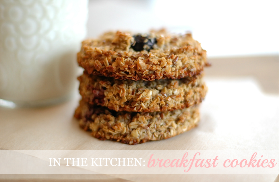 Screen shot 2012 03 20 at 12.30.49 AM in the kitchen: skip the packaged cereal bars & make breakfast cookies instead!