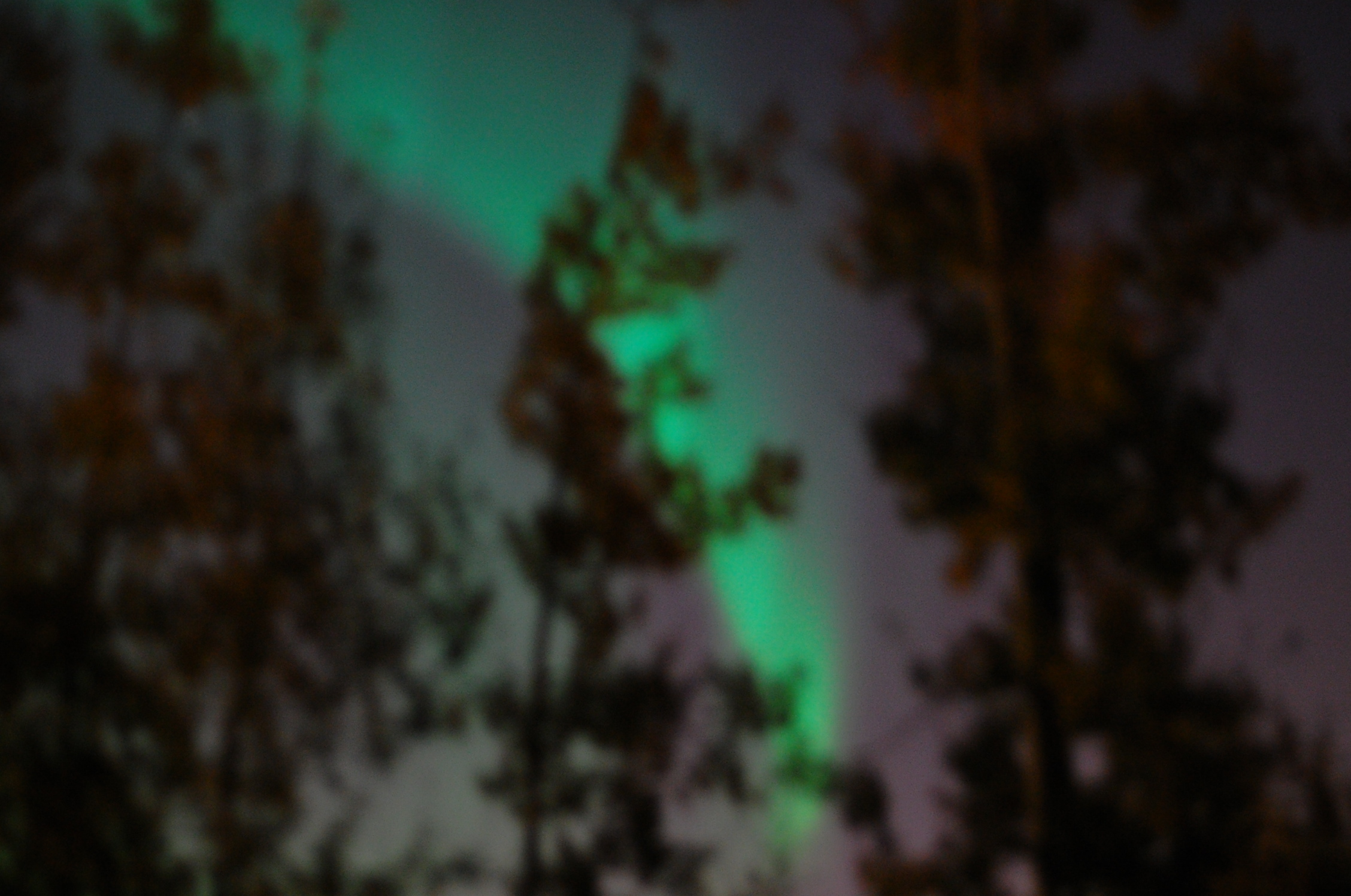 the northern lights at my door
